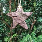 Basteln mit Rinde für Weihnachten: In fünf Minuten ist der Stern aus Borke fertig