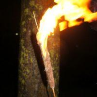 Unsere selbst gebaute fackel brennt richtig gut.  foto (c) kinderoutdoor.de
