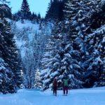 Skitour mit Kindern in Kärtnen: Gemeinsam zur Grünleitennockhütte aufsteigen