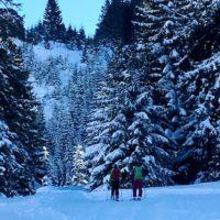 Skitour mit Kindern zur Grünleitennockhütte oder / und auf den Gipfel.  Foto (c) kinderoutdoor.de
