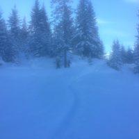 Skitouren für Kinder führen auch auf verschneiten Forstwegen entlang und trotzdem haben die Outdoorkids ihre Freude daran.   foto (c) kinderoutdoor.de