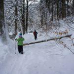 Winterwanderung für die Familie: Frostig geniale Ziele