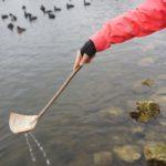 Bushcraft mit Kinder: Eine Schöpfkelle aus Birkenrinde basteln