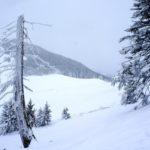 Berghütte mit Kindern: Packliste für ein Winterwochenende