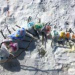 Landart im Winter mit Kindern: Eine bunte Schneeraupe bauen