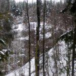 Wanderung mit Kindern zum Wasserfall: Bei Osterdorf im Allgäu rauscht es!