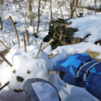 Bei der winterlichen Schnitzeljagd gewinnt beim Eis-Igel-Spiel, wer die meisten Stacheln ergattert.   foto (c) kinderoutdoor.de