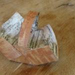 Bushcraft mit Kindern: Einen Korb aus Birkenrinde mit Outdoorkids basteln