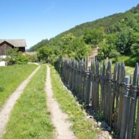 Urlaub auf dem Bauernhof in Südtirol im Frühling: Wandern, den tierischen Nachwuchs entdecken und raus in die Natur.   foto (c) kinderoutdoor.de