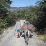 Eselwandern mit Familie: Der Graue gibt das Tempo vor!