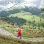 Wanderung mit Kindern: Tipps zum Planen einer Tour mit der Familie