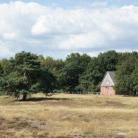 Flußauen und Heidelandschaften wechseln sich am Aller-Radweg ab.   foto (c) kinderoutdoor.de