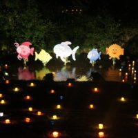Auch der Bach selbst ist bei der Tonbachtal Beleuchtung Baiersbronn  mit Kerzenlichtern llluminiert.  foto (c) kinderoutdoor.de