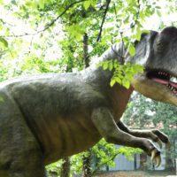 Jurassic Park? Nein die Kinder wandern auf einem Dinoweg.  foto (c) kinderoutdoor.de