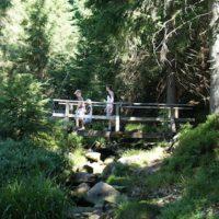 In der Wildnis mit Kindern übernachten in im Naturpark Schwarzwald Mitte / Nord und dem Nationalpark in sechs kleinen Trekking Camps möglich.   foto (c) kinderoutdoor.de