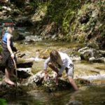 Kleine Abenteuer für Kinder: Lagerfeuer mit Stockbrot, am Wasser spielen, Nachtwanderung, Höhle erkunden und Expedition im Wald