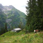 Wandertouren richtig planen: Tipps von Experten