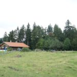 Kinder wandern von Hütte zu Hütte: Über die Frasdorfer Hütte zur Hochrieshütte wandern