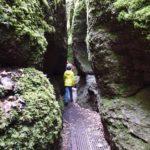 Kinder Outdoor Ausflugsziele in Thüringen: Paddeln, Bären, Rennsteig und eine Menge Wald