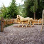 Themenwege für Kinder: In Hafling auf das Pferd gekommen