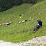 Tirolwool: Natürlich, nachhaltig und isolierend