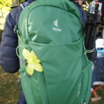 Test Daypacks: Lowe Alpine, Deuter und Camelbak auf Tour ausprobiert