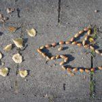 Landart mit Kindern im Herbst: Eicheln, Kastanien oder Bucheckern gegen Langeweile