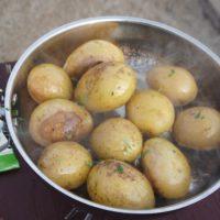 Outdoor Rezepte für Kinder: kartoffeln mit Rosmarin schmecken den Kleinen genial.  foto (c)kinderoutdoor.de