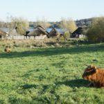 Haithabu mit Kindern besichtigen: Wikinger starkes Ausflugsziel für Familien in Schleswig-Holstein