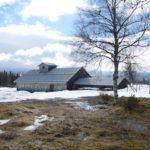 Hütte im Harz: Familien mitten im wilden Winterwonderland