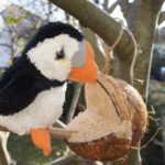 Gefüllte Kokosnuss als Futterstelle mit Kindern selbst basteln