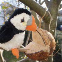 Fertig ist die Kokosnuss als Futterstelle für die Vögel.  foto (c) kinderoutdoor.de