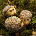 Kinder backen Plätzchen: Pilze, Igel und Spitzbuben
