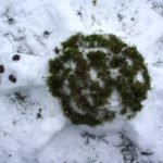 Landart im Winter mit Kindern: Wir bauen eine Schildkröte aus Schnee