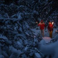 Nachtwanderung mit Fackel in Tirol: In der Dunkelheit ist der verschneite Bergwald noch reizvoller.  Foto (c): Tiroler Zugspitz Arena/Christoph Jorda