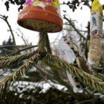 Mit dem Taschenmesser basteln: Eine Futterstelle für Wildvögel
