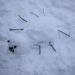 Landart mit Kindern im Winter: Eine lustige Schneespinne
