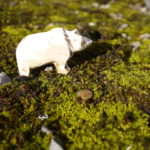 Kinder schnitzen einen Bären: Meister Petz und das Taschenmesser