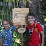 Kindern wandern in Tirol: Hall-Wattens mit seinen tollen Themenwanderwegen