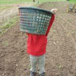 Kleine Abenteuer für Kinder kosten nichts: Damm bauen, Feuer machen, Bauernhof