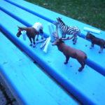 Schnitzeljagd für Kinder: Tierische Rekorde!