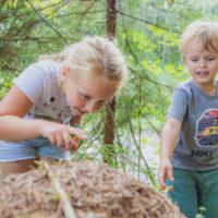 Kinder wandern auf Themen- und Waldwegen im Salzburgerland (c) Tourismus Salzburger Land