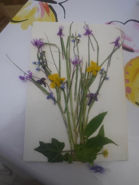 Kinder Basteln Mit Gepressten Blumen Kinderoutdoor