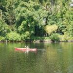 Kinder paddeln in Brandenburg: Von Wassersuppe durch den Hohennauener-Ferchesarer See