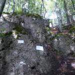Klettersteig für Kinder: Via Ferrata Bambini im Frankenjura