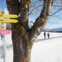 Kinder Outdoor Winter wandern bei Innsbruck (c) Innsbruck Tourismus