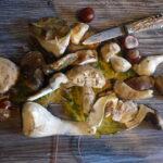 Kinder Outdoor Rezepte für die Berghütte: Steinpilzsalat mit Knödeln