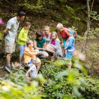 Familien Wanderung in Schenna ildnachweis: Tourismusverein Schenna/Florian Andergassen