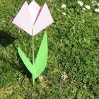 Kinder basteln eine Tulpe